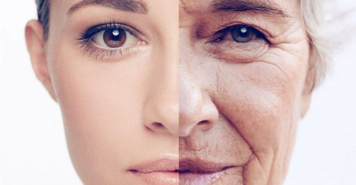 ¿Cuáles son las causas del envejecimiento de la piel?