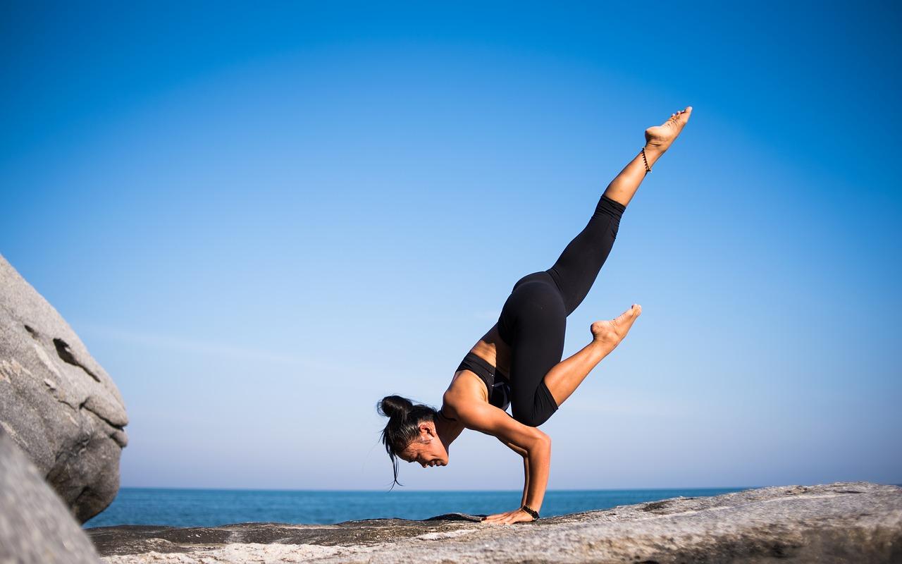 Equilibrio del organismo