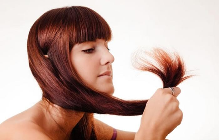 Comencé a utilizar estos remedios y créeme que mi cabello hoy en día está completamente radiante