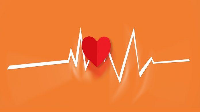 Conoce los ejercicios de cardios más activos